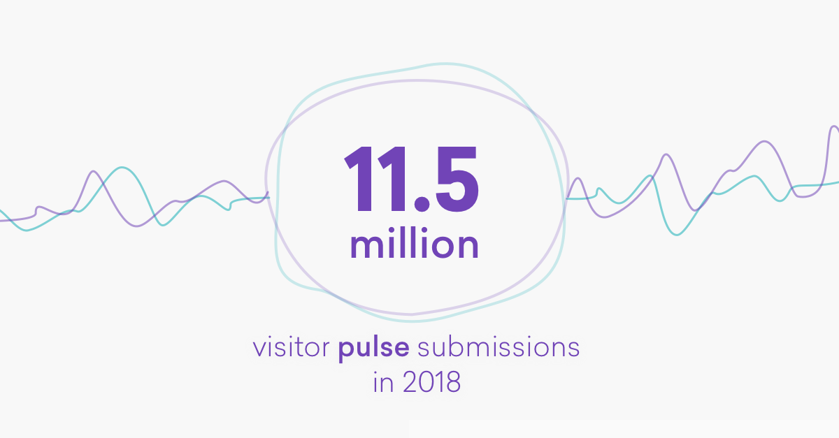 infographic_visitorpulse